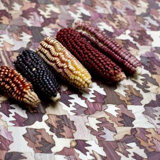 Lélegzetelállító felületek színes kukoricából