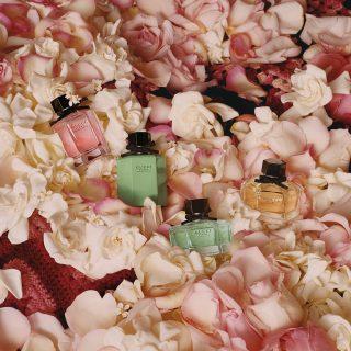 A nyár legüdébb parfümje Grace Kelly virágaival