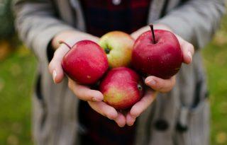 100 millió mikroorganizmus él az almánkon