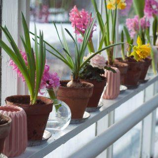 5 stílusos dekoráció az ablakpárkányra