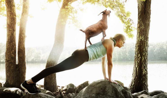 Kecskétől a lemúrig: miért jó állatokkal jógázni?
