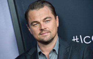 Leonardo DiCaprio környezetvédelmi világszervezet létrehozásában segédkezik