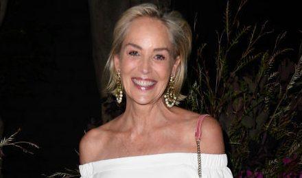 Sharon Stone-t elfelejtette Hollywood a sztrókja után