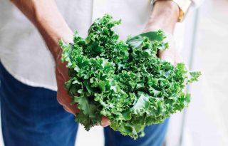 Hogyan szeressük meg a zöldségeket?
