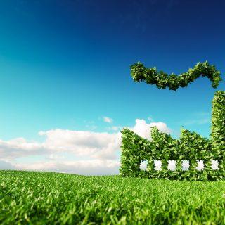 Greenwashing, a zöldbe csomagolt környezetszennyezés