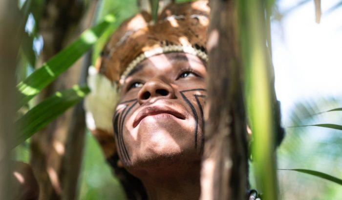 3 dolog, amivel ténylegesen tehetsz az Amazonas-esőerdőtüzek megfékezéséért