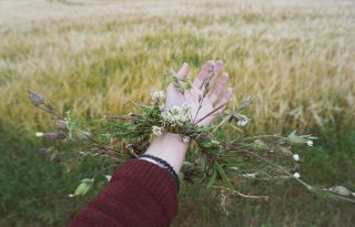 ÖKO: a műanyagmentes júliusnak vége, de a környezettudatosságnak nem