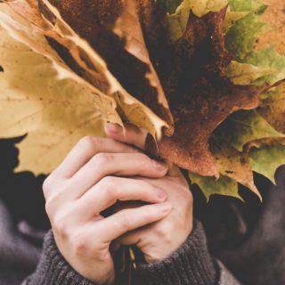 Zamatos őszi szépségújdonságok, ha a természetes összetevőket keresed