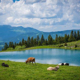 Így utazunk mi: rejtett kincsek a szlovén Alpokban