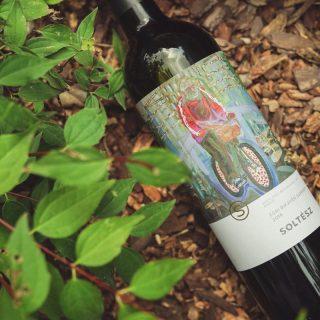 Munkácsy-díjas festőművész gyönyörű munkái ékesítik a Soltész borokat