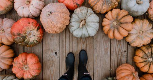 Legyen tökösebb az október!