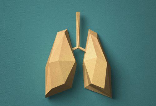A tüdőt is elérhetik a zsírpárnák