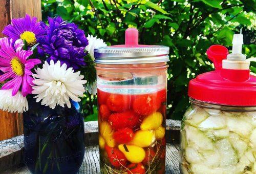 Pofonegyszerű a fermentálás, csak nem tudunk róla –bevezetés a savanyúságok világába