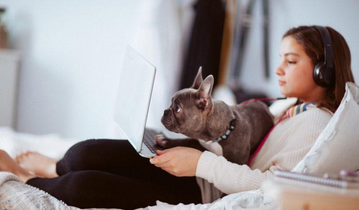 Népszerűek az online képzések: egyre többen és többet tanulnak a neten