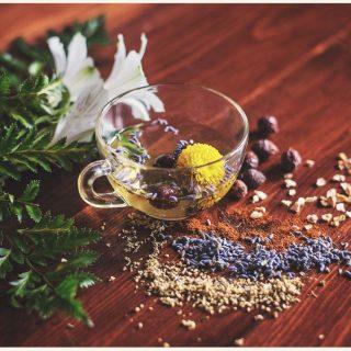 800 természetes gyógymóddal az egészségünkért
