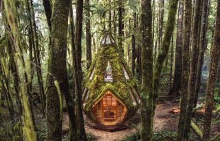 Mohával benőtt erdei mesekunyhóban pihenhetünk