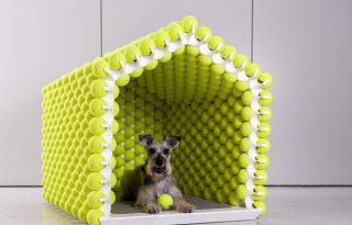 Minden kutya álma a teniszlabdákból épített ház