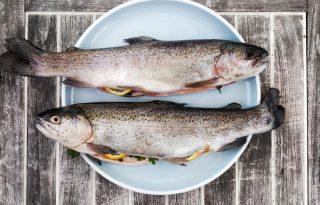 Miért egyenek minél több halat a gyerekek?