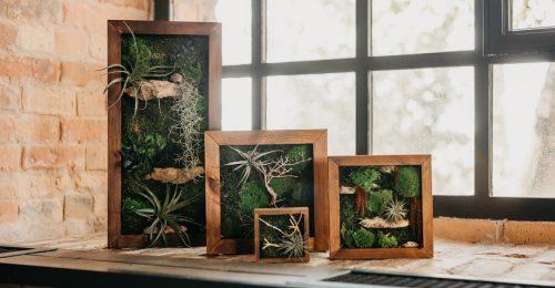 Életre kelt növénydekorációk