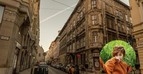 Az én utcám: Döbrösi Laura