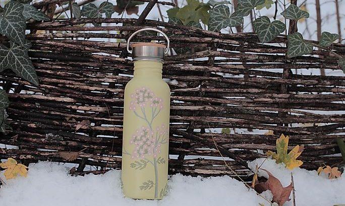 Csodaszép, kézzel festett palackok növényimádóknak