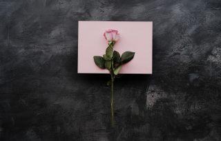 Ecetes Valentin-nap: a visszautasítás briliáns módja
