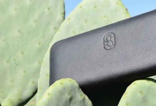 Kaktuszbőr a jövő fenntartható anyaga