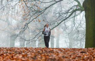 Városban, zöldben: miről beszélek, amikor futásról beszélek?
