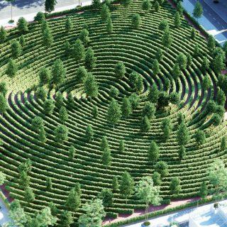 A park, amit távolságtartásra terveztek