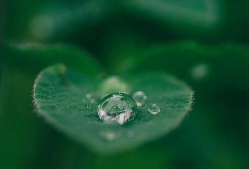 Leszámol a mikroműanyagos formulákkal az Eucerin