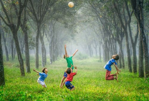 A mozgás öröme program – már otthon is!