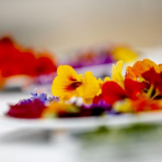 Ezek a virágok nemcsak szépek, de akár meg is eheted őket