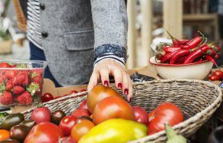 Városban, zöldben: óda a piacozáshoz