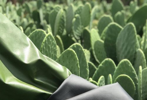 Fenyőtű, alga és kaktusz: izgalmas alapanyagokból készülnek a jövő ruhái