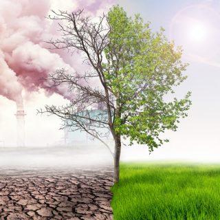 Légszennyezés – az alapok