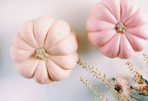 Idén ősszel a rózsaszín tök a menő