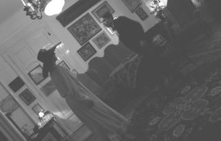 Mintha meglesnénk Adyt és Lédát a párizsi lakásukban