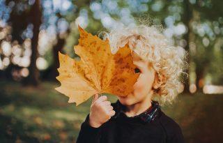 Szívjuk magunkba az ősz minden csodáját!