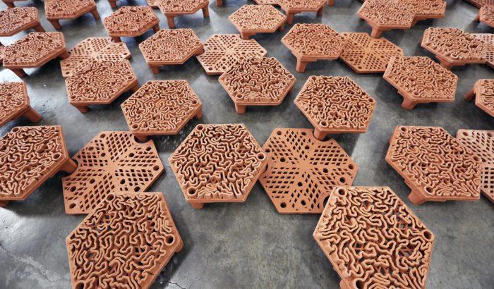 3D nyomtatott csempékkel mentik meg a korallzátonyokat