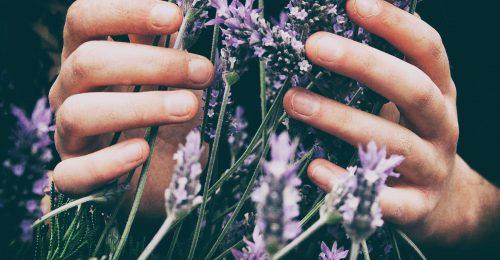 Milyen az otthon ideális illata a csillagjegyek számára?