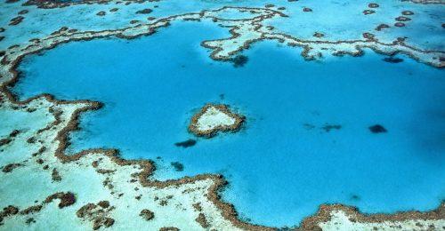 Megnyitják a látogatók előtt a szív alakú korallzátonyt