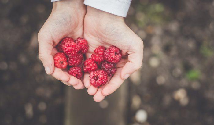 Tea, bogyósok és alma: nyerő hármas a magas vérnyomás ellen