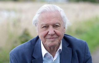 David Attenborough új dokumentumfilmje egyszerre csodálatos és megdöbbentő
