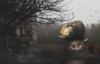 Darázsfészek ihlette a francia lombházakat