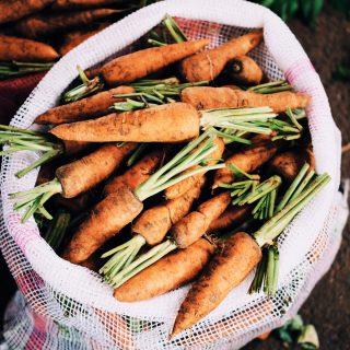 Organikus ételek: miért jobb, és miből érdemes ezt választani?