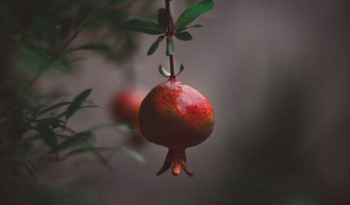 Gránátalma, soba, hering: újévi ételek a világ körül