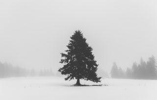 Koronavírus és lelki egészség: hogyan kezeljük a honvágyat karácsonykor külföldön élő magyarként?