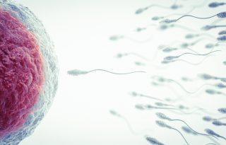 Orvosok, akik évtizedeken át a saját spermájukkal termékenyítették meg a pácienseiket
