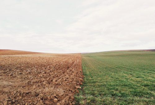 Egészséges bolygó, egészséges emberek: a klímaváltozás lassítása így ment(hetene) életeteket