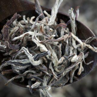 Fehér tea: az igazi beauty booster